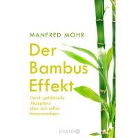 Der Bambus Effekt von Manfred Mohr